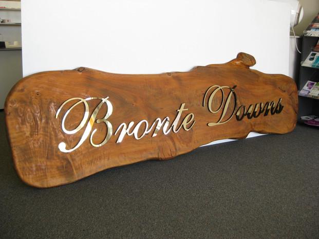 Bronte Downs