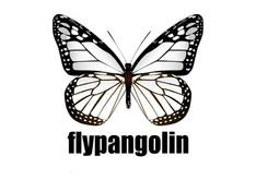 Flypangoin logo.jpg