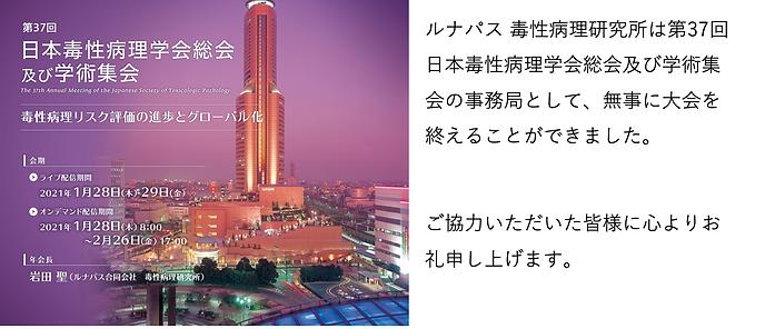 スクリーンショット 2021-02-03 15.36.17.png
