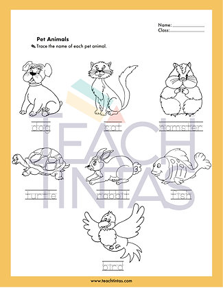Pets worksheet (english)