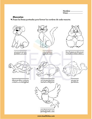 Pets worksheet (spanish)