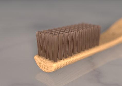 Wood brush with seed 2.133.jpg