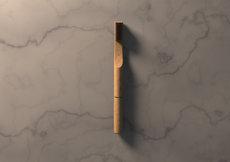 Wood brush with seed 2.134.jpg