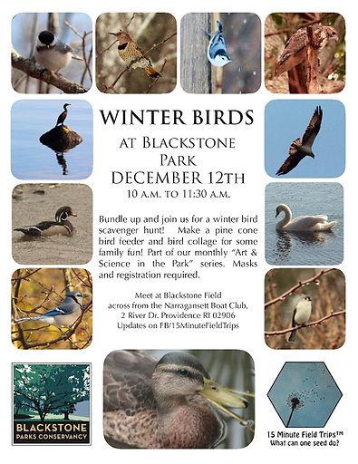 BPC winter birds-page-001.jpg