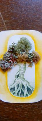 Substance- couture de lichens