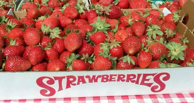 Who Doesn't Love Strawberries?