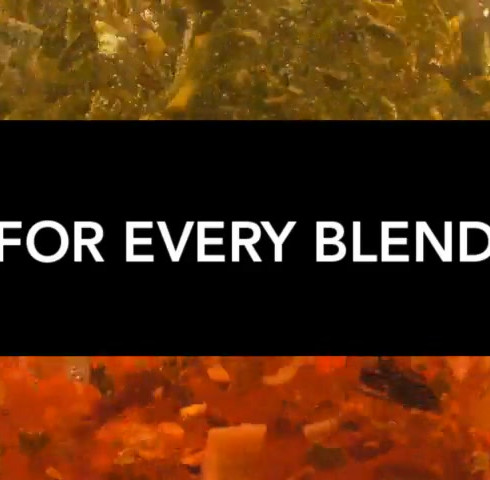 Lipton's Fruit Tea
