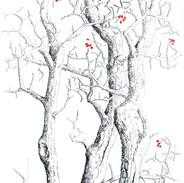 Three Hawthorns 140 x 50 cm