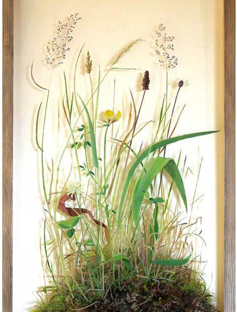 Meadow 79 x 41 cm