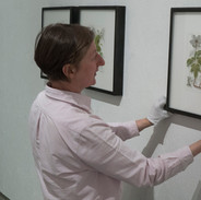 Yanny hanging the exhibition