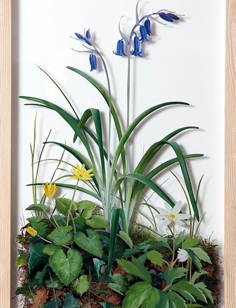 Bluebell 68 x 39 cm