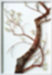 2plum-blossom.jpg
