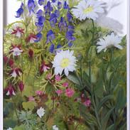 The Flower Border June  83 x 44 cm