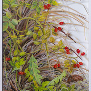 Rosehips with palm fronds  October   60 x 38 cm