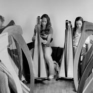 Harp students 2007.