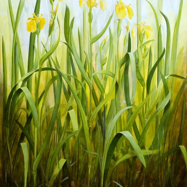 Yellow Flag 130 x 90 cm