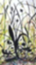 Meadow-plantain1.jpg