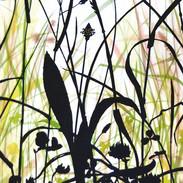 Meadow Plantain  48 x 27 cm