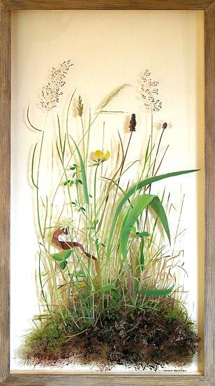 6irish-meadow.jpg