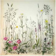 Burren Meadow 60 x 60 cm