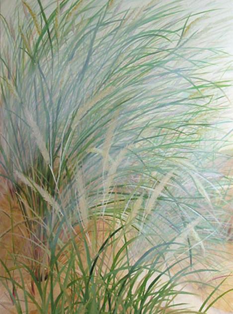 Marram Grass 60 x 40 cm
