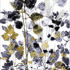Hedgerow silhouettes with Buttercup and Herb-Robert