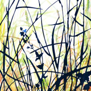 Meadow with Speedwell  48 x 27 cm