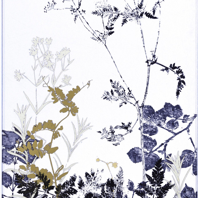 Hedgerow silhouettes with Cow Parsley and Vetch