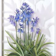 Bluebells May 57 x 34 cm