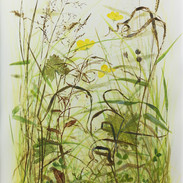 In The Meadow 43 x 30 cm