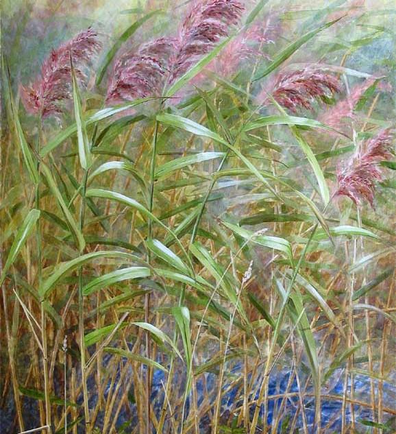 Common Reeds 100 x 70 cm