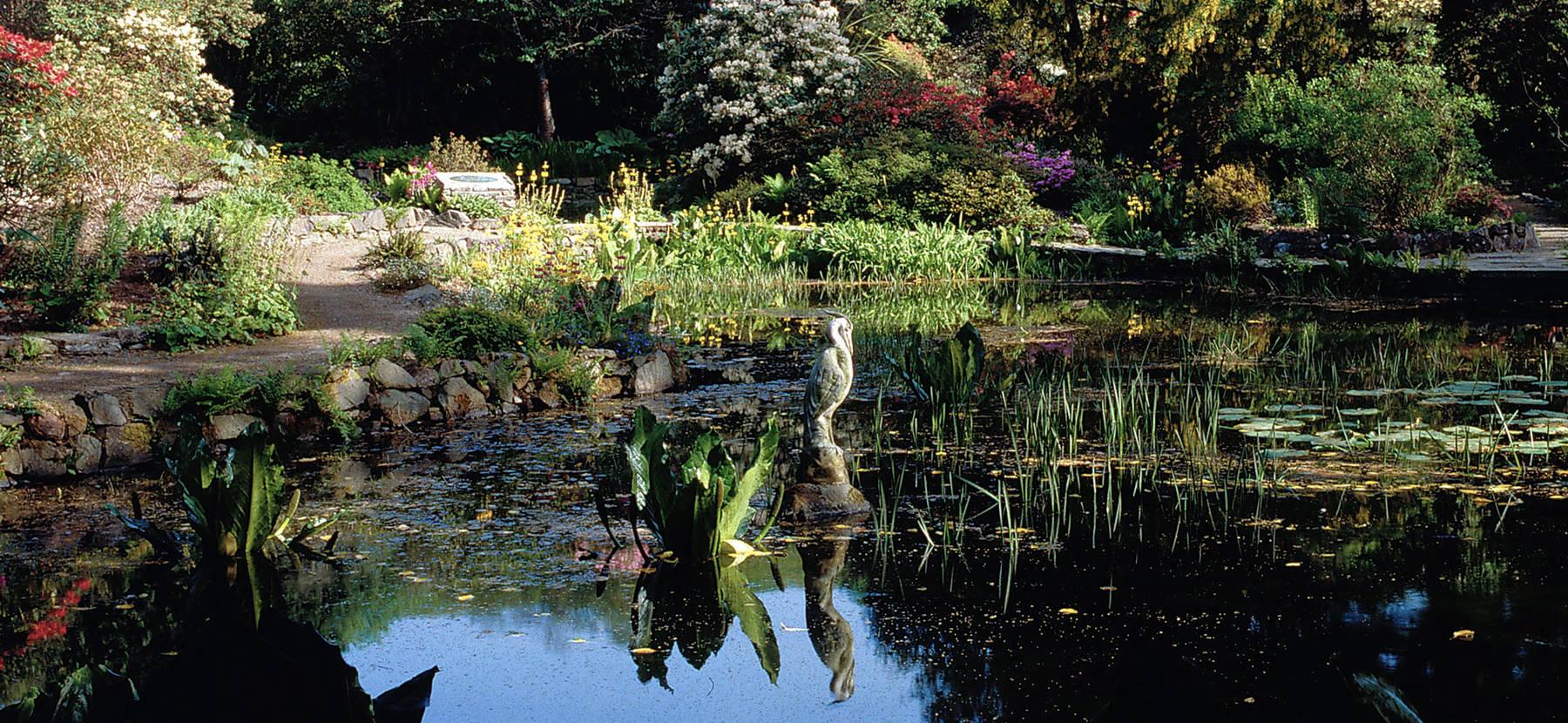 Arduanie Garden