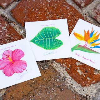 Sasha Design Hawaiian Plants Sticker