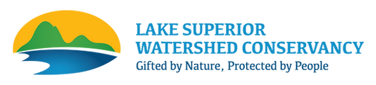 LSWC_Logo_2021_Horiz_4c_edited_edited.pn