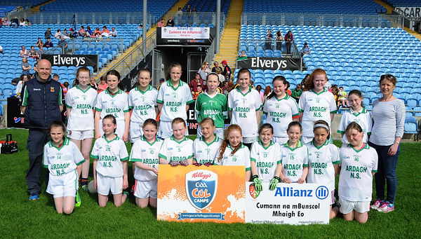 Division 3 County Final winners 2017