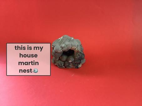 House Martins 2: The Return!!
