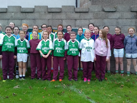 Ardagh Girls Go Close in Ardnaree.
