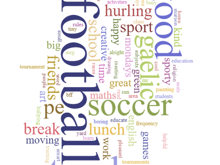 10 Words To Describe Ardagh NS:A Survey by 3rd and 4th Class