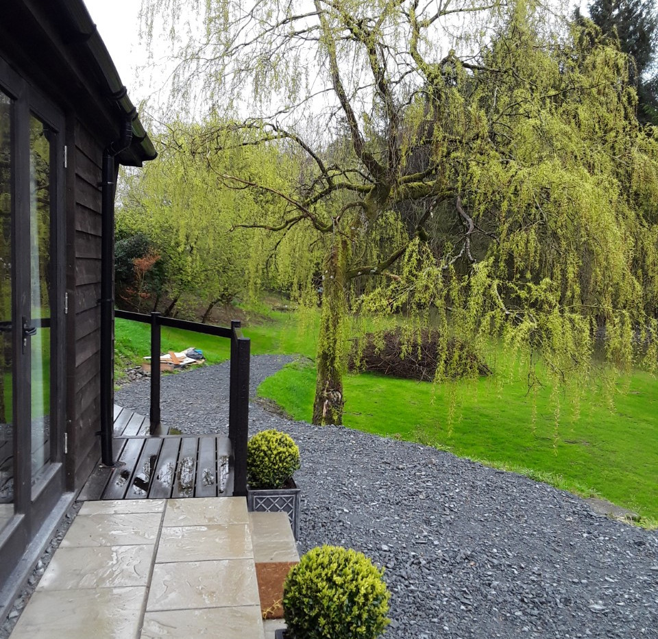 A view down the garden