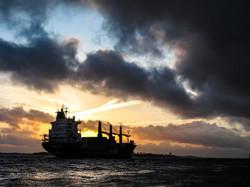 MaritimeFreight