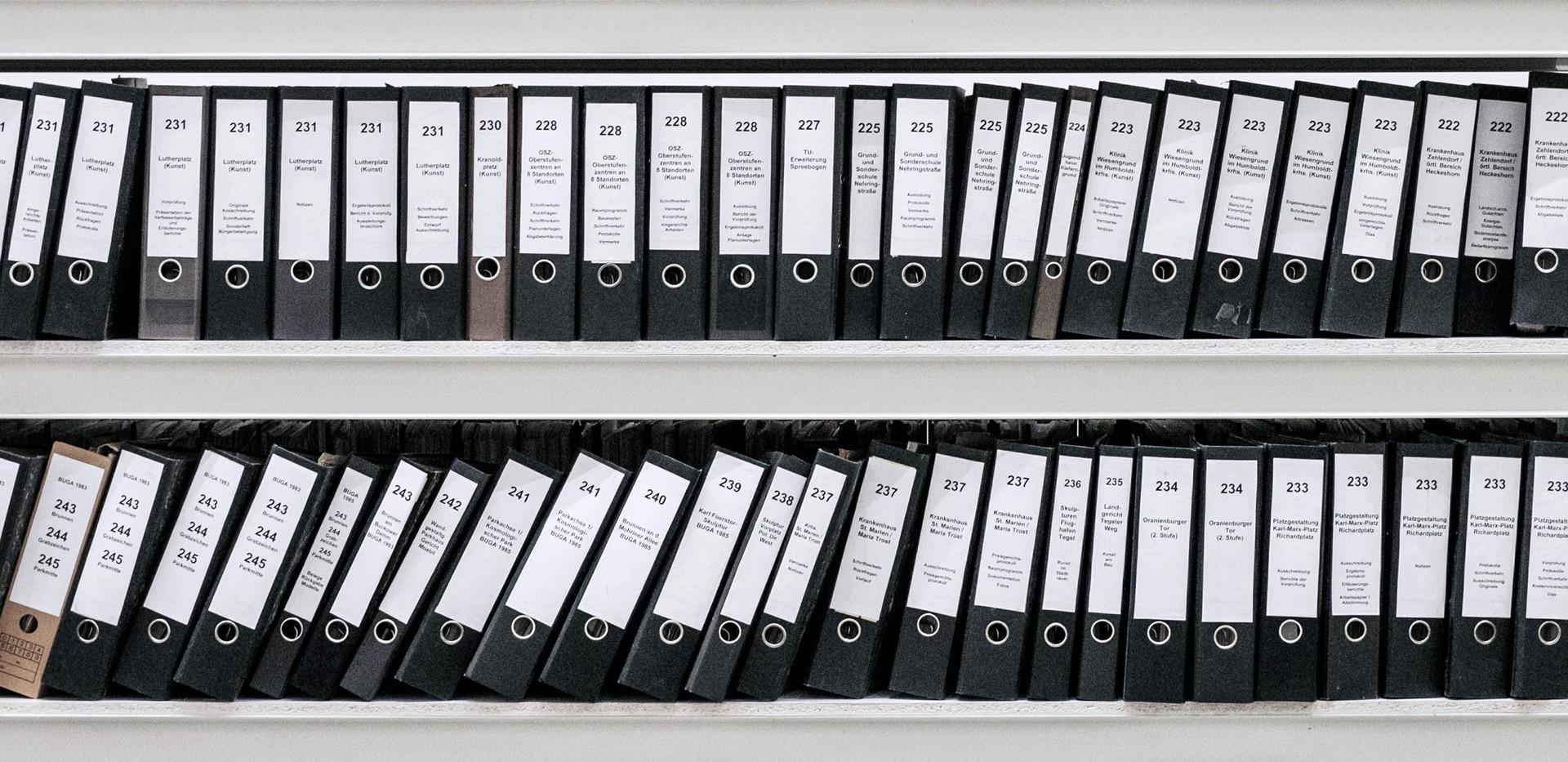 Archivos organizados