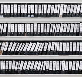 Arquivos organizados