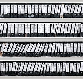 Organize Dosyalar