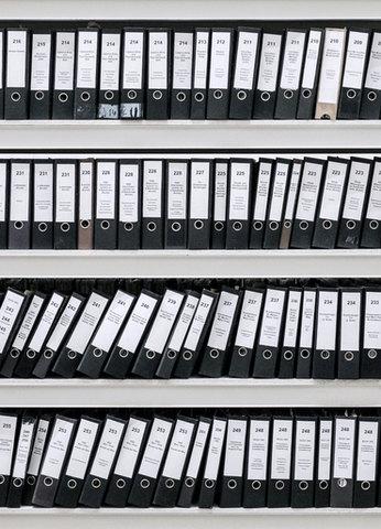 Организованные файлы