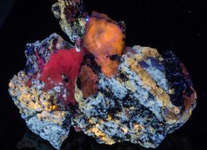 Afghanite, Calcite, Phlogopite - Badahkshan, Afghanistan