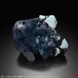 Wish Wang - D186D096-8DB6-4D26-86FF-2683
