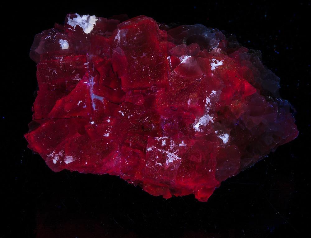 Fluorite - Tule Mine, Melchor Múzquiz, Mun. de Melchor Múzquiz, Coahuila, Mexico