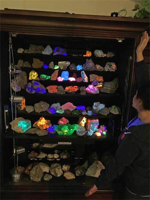 Longwave Fluorescent Display Cabinet