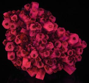 Hexagonal Columnar Calcite - Black Scalenohedron Color Zoning
