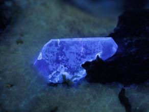 Benitoite crystals from the Dallas Gem mine, California USA